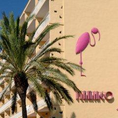 Gran Hotel Flamingo пляж