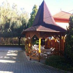 Отель Villa Valeria Венгрия, Хевиз - отзывы, цены и фото номеров - забронировать отель Villa Valeria онлайн фото 10
