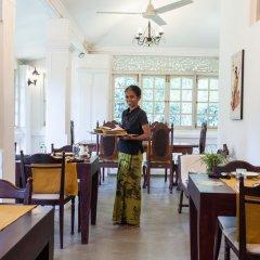 Отель Plantation Villa Ayurveda Yoga Resort гостиничный бар