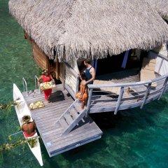 Отель Manava Beach Resort and Spa Moorea Французская Полинезия, Папеэте - отзывы, цены и фото номеров - забронировать отель Manava Beach Resort and Spa Moorea онлайн приотельная территория