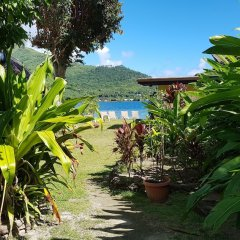 Отель Kaveka Французская Полинезия, Папеэте - отзывы, цены и фото номеров - забронировать отель Kaveka онлайн фото 5