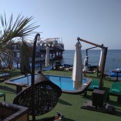 Гостиница Chernomorskaya в Сочи отзывы, цены и фото номеров - забронировать гостиницу Chernomorskaya онлайн фото 9