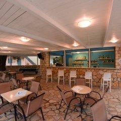 Отель Olive Grove Resort гостиничный бар