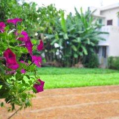 Гостевой Дом Petunia Garden Homestay фото 12