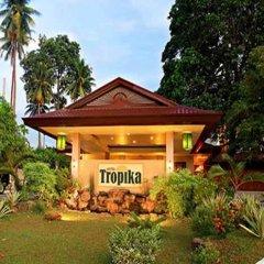 Отель Tropika Филиппины, Давао - 1 отзыв об отеле, цены и фото номеров - забронировать отель Tropika онлайн фото 14