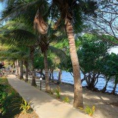 Отель Funky Fish Beach & Surf Resort Фиджи, Остров Малоло - отзывы, цены и фото номеров - забронировать отель Funky Fish Beach & Surf Resort онлайн фото 7