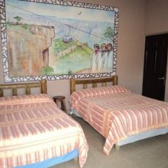 Hotel Real de Chapultepec комната для гостей фото 3