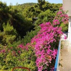 Отель Studios Marianna Греция, Эгина - отзывы, цены и фото номеров - забронировать отель Studios Marianna онлайн фото 10