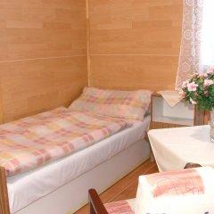 Отель Chalets Vitkova Hora Карловы Вары комната для гостей