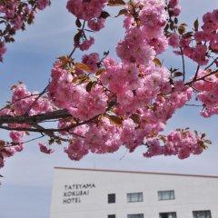 Tateyama Kokusai Hotel Тояма фото 3