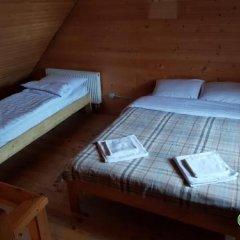 Гостиница Dream Forest Украина, Волосянка - отзывы, цены и фото номеров - забронировать гостиницу Dream Forest онлайн детские мероприятия фото 2
