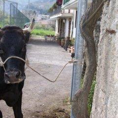 Отель Agriturismo Sentiero Dei Sapori Аджерола с домашними животными