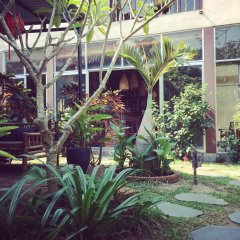 Отель The Happy Bird B&B фото 3