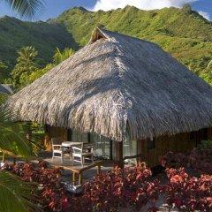 Отель Hilton Moorea Lagoon Resort and Spa фото 7