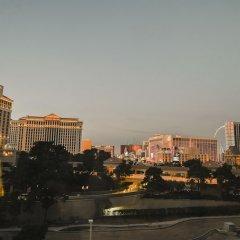 Отель Jockey Club Suite США, Лас-Вегас - отзывы, цены и фото номеров - забронировать отель Jockey Club Suite онлайн фото 3
