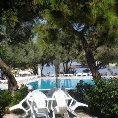 Club Mackerel Holiday Village Турция, Карабурун - отзывы, цены и фото номеров - забронировать отель Club Mackerel Holiday Village онлайн фото 15