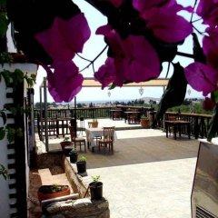 Отель Knidos Butik Otel Датча питание