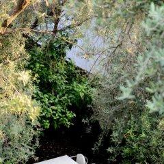 Отель OLIVA Будва приотельная территория фото 2