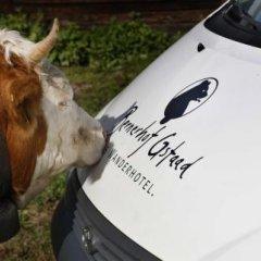 Отель Wander & Gourmet Hotel Bernerhof Швейцария, Гштад - отзывы, цены и фото номеров - забронировать отель Wander & Gourmet Hotel Bernerhof онлайн с домашними животными