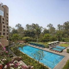 Отель ITC Maurya, a Luxury Collection Hotel, New Delhi Индия, Нью-Дели - отзывы, цены и фото номеров - забронировать отель ITC Maurya, a Luxury Collection Hotel, New Delhi онлайн балкон