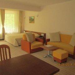 Отель Fisherman's Hut Family Hotel Болгария, Чепеларе - отзывы, цены и фото номеров - забронировать отель Fisherman's Hut Family Hotel онлайн комната для гостей фото 4