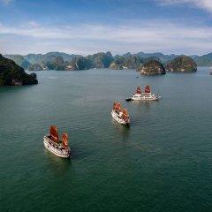 Отель Halong Carina Cruise Вьетнам, Халонг - отзывы, цены и фото номеров - забронировать отель Halong Carina Cruise онлайн приотельная территория