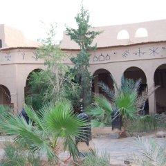Отель Takojt Марокко, Мерзуга - отзывы, цены и фото номеров - забронировать отель Takojt онлайн