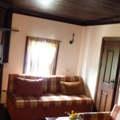 Отель Parlapanova Guest House - Pool Access Боженци в номере