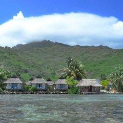Отель Pension Motu Iti Французская Полинезия, Папеэте - отзывы, цены и фото номеров - забронировать отель Pension Motu Iti онлайн приотельная территория