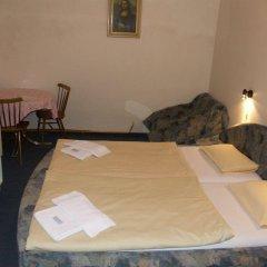Отель Brezina Pension комната для гостей фото 2