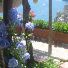 Отель Villa Marietta Италия, Минори - отзывы, цены и фото номеров - забронировать отель Villa Marietta онлайн фото 13