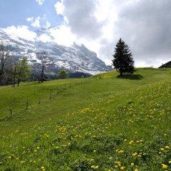 Отель Aspen Alpine Lifestyle Hotel Швейцария, Гриндельвальд - отзывы, цены и фото номеров - забронировать отель Aspen Alpine Lifestyle Hotel онлайн приотельная территория фото 2
