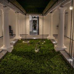 Отель Villa Rosa Blanca - White Rose Галле фото 6
