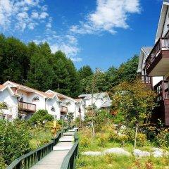 Отель Swiss Pension Южная Корея, Пхёнчан - отзывы, цены и фото номеров - забронировать отель Swiss Pension онлайн фото 9
