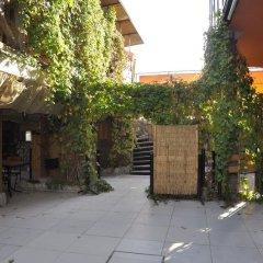 Гостиница Оазис фото 3