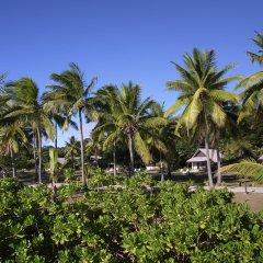 Отель Musket Cove Island Resort & Marina фото 7