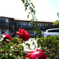 Отель Sunset Motel фото 5