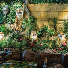 Отель Sheraton at the Falls США, Ниагара-Фолс - отзывы, цены и фото номеров - забронировать отель Sheraton at the Falls онлайн фото 2