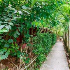 Отель Bauhinia Resort фото 5