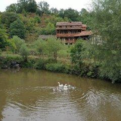 Отель EcoKayan Армения, Дилижан - отзывы, цены и фото номеров - забронировать отель EcoKayan онлайн приотельная территория