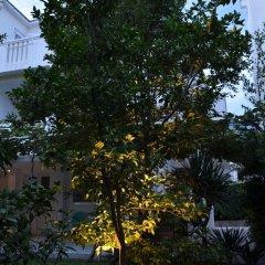 Отель Casablanca Apartments Черногория, Будва - отзывы, цены и фото номеров - забронировать отель Casablanca Apartments онлайн фото 3