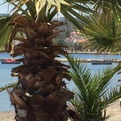 Griffon Hotel Турция, Helvaci - отзывы, цены и фото номеров - забронировать отель Griffon Hotel онлайн пляж