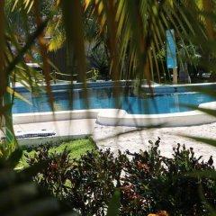 Отель Villa Tulum Hotel Италия, Рим - отзывы, цены и фото номеров - забронировать отель Villa Tulum Hotel онлайн фото 6