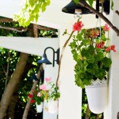 Отель Acropol Hotel Греция, Халандри - отзывы, цены и фото номеров - забронировать отель Acropol Hotel онлайн балкон