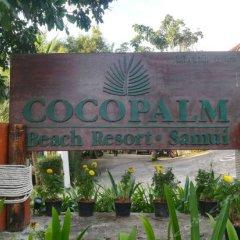 Отель Coco Palm Beach Resort