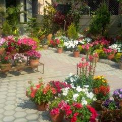 Отель Orchid Непал, Покхара - отзывы, цены и фото номеров - забронировать отель Orchid онлайн фото 9