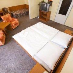Отель Hvezda Чехия, Хеб - отзывы, цены и фото номеров - забронировать отель Hvezda онлайн спа