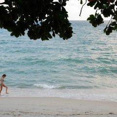 Отель White Sand Samui Resort Таиланд, Самуи - отзывы, цены и фото номеров - забронировать отель White Sand Samui Resort онлайн пляж фото 2