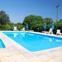 Отель Angelos Studios Греция, Кос - отзывы, цены и фото номеров - забронировать отель Angelos Studios онлайн фото 3