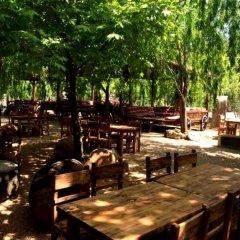 Kas Dogapark Турция, Патара - отзывы, цены и фото номеров - забронировать отель Kas Dogapark онлайн питание фото 3